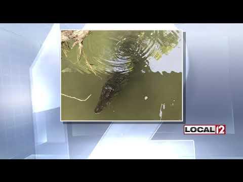 Farmersville, OH Local News - News Break